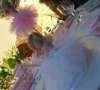 Εικόνα με Διακόσμηση τραπεζιού βάπτισης μπαλαρίνα