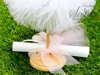 Εικόνα με Προσκλητήριο με μπομπονιέρα μαζί μπαλαρίνα