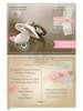Εικόνα με Προσκλητήρια βάπτισης carte postale πιπίλα