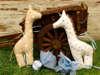 μπομπονιέρα βάπτισης αγοριού υφασμάτινη καμηλοπάρδαλη πουά
