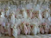 Εικόνα με Χειροποίητες μπομπονιέρες βάπτισης ομπρελίτσα