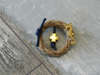 Εικόνα με Μαρτυρικό πέτου στεφανάκι ιππόκαμπος