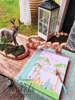 Εικόνα με Στολισμός βάπτισης ινδιάνικος - boho