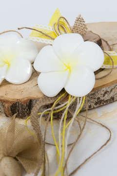 Εικόνα του Μπομπονιέρα σαπουνάκι πλουμέρια