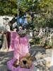 Εικόνα με Στολισμός βάπτισης με πουλάκια