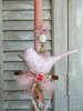 Εικόνα με Πασχαλινή λαμπάδα πουλάκι