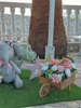 Εικόνα με Στολισμός Βάπτισης ελεφαντάκια